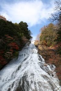 yu_fall